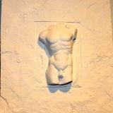 Plaque – Nude Male Torso   #1402