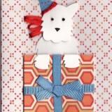 Birthday Card  #BC-06